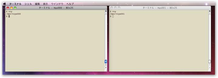 Mac OS X での実行例2画面